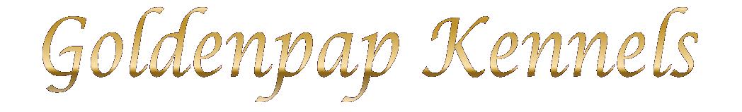 Goldenpap Kennels